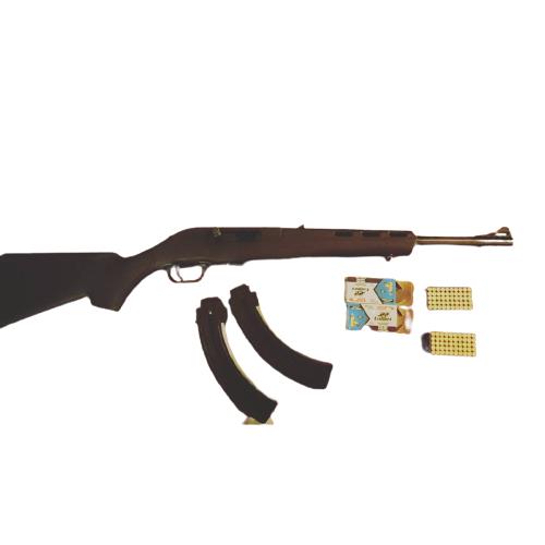 Mossberg blaze rifle 25 round